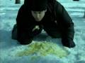 "WHO SAID -""DON'T EAT YELLOW SNOW?"""